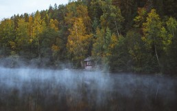 red cabin on the lake surrounded by trees