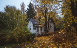 Finnish house covered in autumn foliage