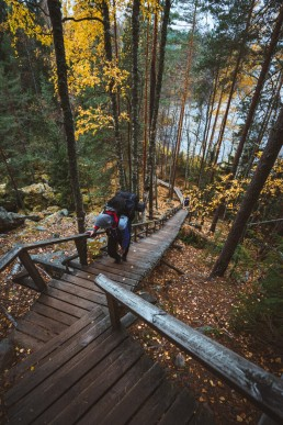 hiker walking up a wooden stairway through the forest