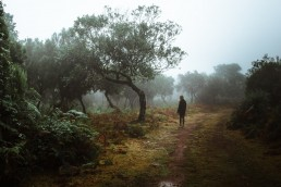 girl stands next to a tree in foggy surroundings