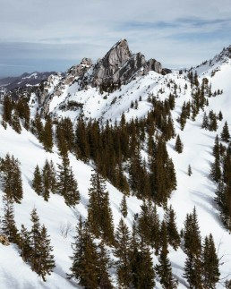 sharp mountain with trees in foreground surrounded by snow