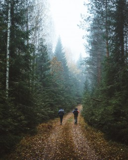 two hikers on a path through the moody forest