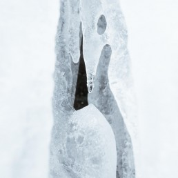 Organic structure of ice in a closeup