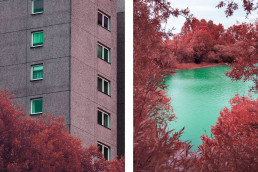 divided picture between architecture and landscapeboth in infrared look